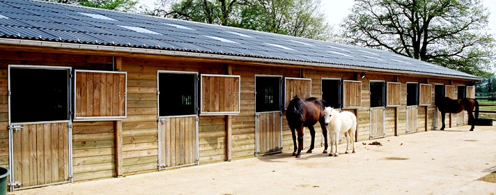 page standard stables